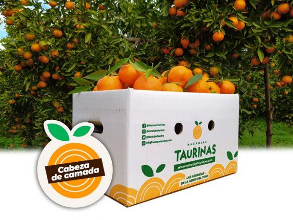 producto-naranjas-taurinas-cabeza2
