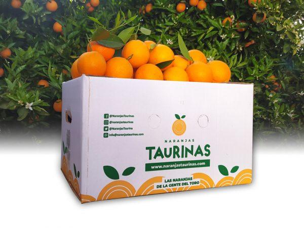Muestra una caja de 15 Kilos de naranjas Valencia Delta de NaranjasTaurinas.com