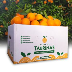 Muestra una caja de 10 Kilos de naranjas Valencia Delta de NaranjasTaurinas.com